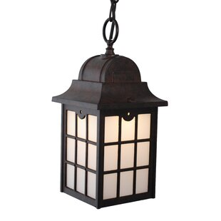Charlton Home Flannigan 1-Light Outdoor Hanging Lantern