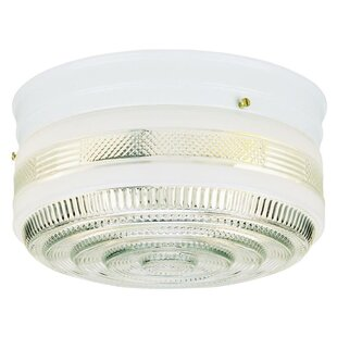 Great deal 2-Light Flush Mount By Westinghouse Lighting