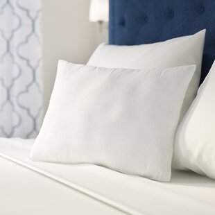 Decorator Pillow Insert