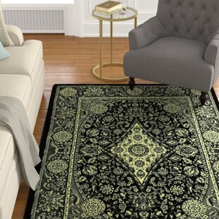 Shopping for Zoel Stain Resistant Black/Gray Oriental Area Rug ByDarby Home Co