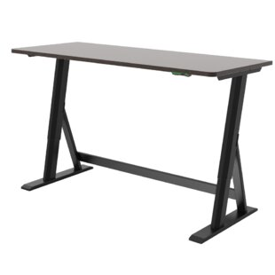 Larabee Electric Standing Desk