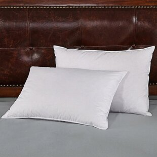 Kaiser Goose Soft Down and Feather Pillow (Set of 2)
