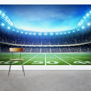 Attractive Under The Lights Football Stadium 8u0027 X 144 Part 20
