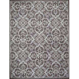 Satterwhite Light Brown Indoor/Outdoor Area Rug