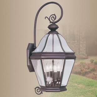 Wheeler 3-Light Outdoor Wall Lantern By Alcott Hill Outdoor Lighting