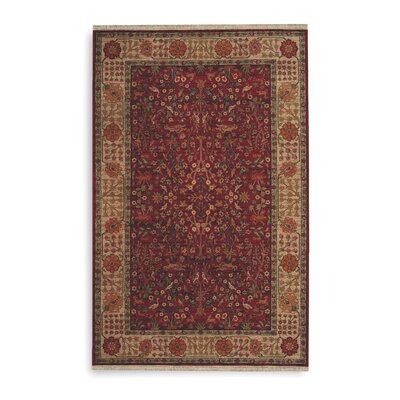 Luxury 8 X 10 Area Rugs Perigold