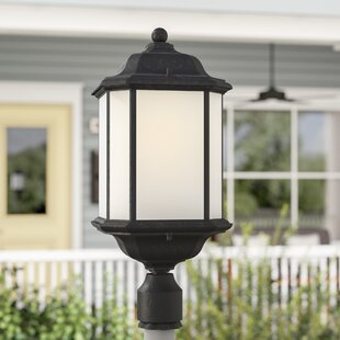 Burtt 1-Light Lantern Head by Darby Home Co