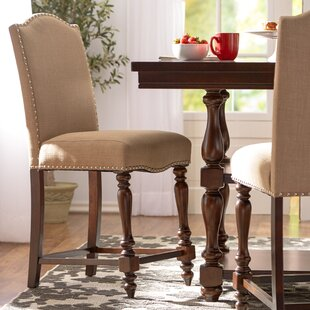 Lanesboro 24 Bar Stool (Set of 2) by Three Posts