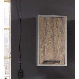 Ohare 40cm X 69cm Wall Mounted Cabinet By Mercury Row
