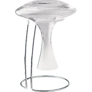 Wine Enthusiast Decanter Drying 1 Bottle Tabletop Wine Rack