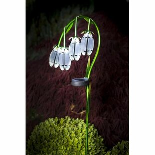Crompton 1 Light LED Decorative And Accent Light Image