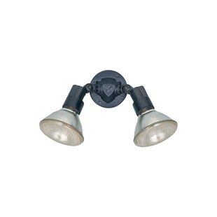 Inexpensive Lowell 2-Light Outdoor Spotlight By Charlton Home