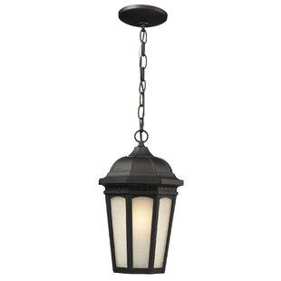Andover Mills Arnaz 1-Light Outdoor Hanging Lantern
