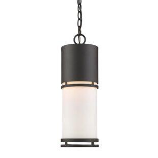 Find the perfect Feder 1-Light LED Outdoor Pendant By Ivy Bronx