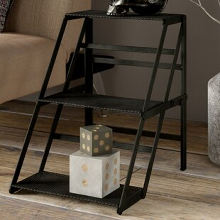 Ithaca Parts Changing Ladder Bookcase by Trent Austin Design