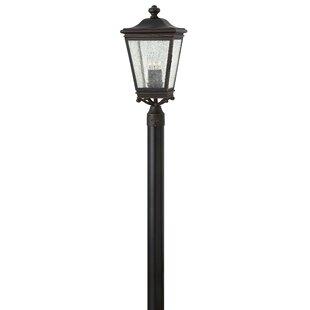 Charlton Home Pullins Outdoor 3-Light Lantern Head