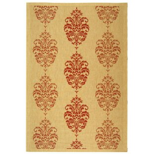 Poole Terracotta Indoor/Outdoor Area Rug
