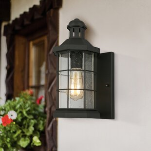 Campuzano Outdoor Wall Lantern