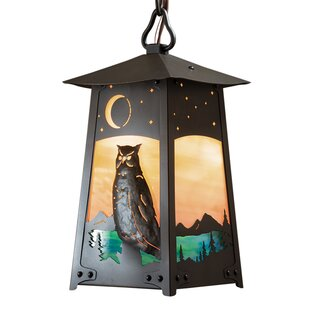 August Grove Devaughn 1-Light Outdoor Hanging Lantern