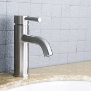 Eviva Ramo One Handle Single Hole Bathroom F..