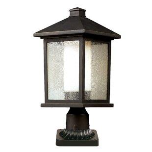 Andover Mills Olive Outdoor 1-Light Lantern Heads