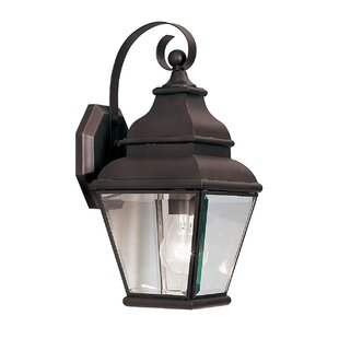 Price comparison Southport 1-Light Outdoor Wall Lantern By Darby Home Co