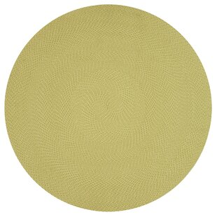 Daniell Hand-Woven Lime Indoor/Outdoor Area Rug