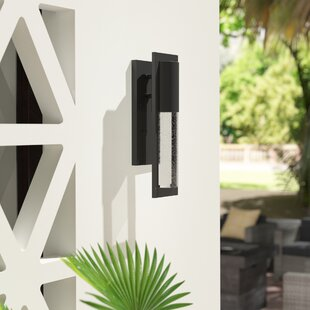 Brayden Studio Craney Outdoor Sconce