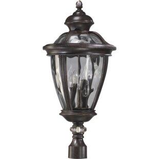 Schuster Outdoor 5-Light Lantern Head by Astoria Grand
