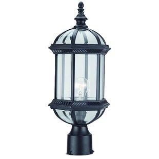 Alcott Hill Huson 1-Light Lantern Head
