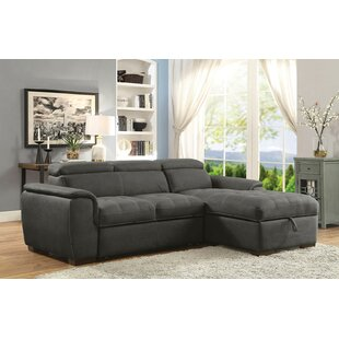 Latitude Run Rafe Sleeper Sectional