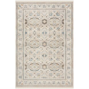 Aisha Ivory/Light Gray Area Rug by Charlton Home