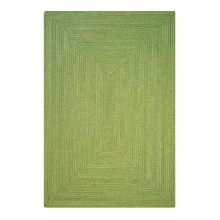 Find Newt Hand-Braided Sage Indoor/Outdoor Area Rug By August Grove