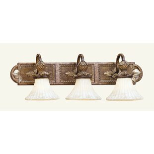 Scotland 3-Light Vanity Light by Astoria Grand