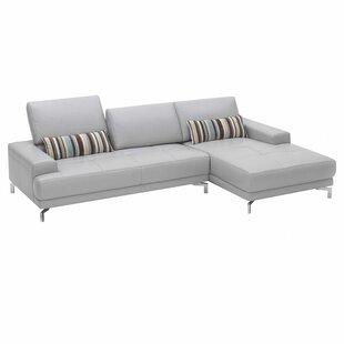 Online Reviews Leather Sectional by Hokku Designs Reviews (2019) & Buyer's Guide