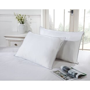 Duck Feather Set Of 2 Pillows (Set Of 2) By Symple Stuff