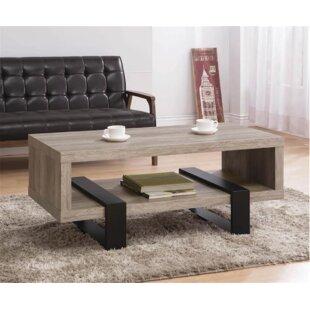 Stoughton Coffee Table with Storage
