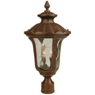Astoria Grand Livonia 2-Light Lantern Head
