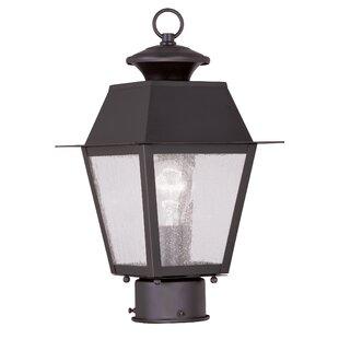 Cynda Outdoor 1-Light Lantern Head by Darby Home Co