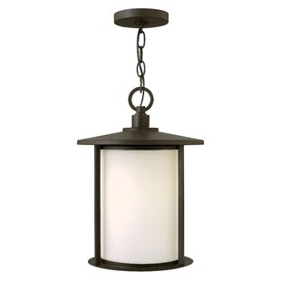 Wyckoff  1-Light Outdoor Hanging Lantern By Latitude Run Outdoor Lighting