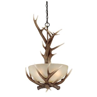 Top Brands of Port Chester 3-Light Bowl Pendant By Loon Peak