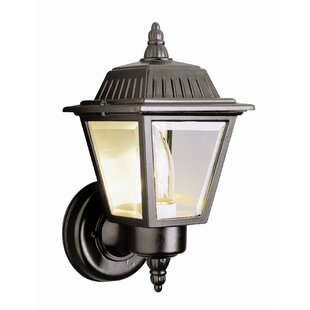 Winston Porter Chidester 1-Light Outdoor Sconce
