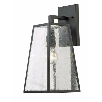 Brayden Studio Hanahan 1-Light Outdoor Wall Lantern