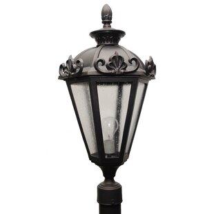 Petrey 3-Light Lantern Head by Alcott Hill