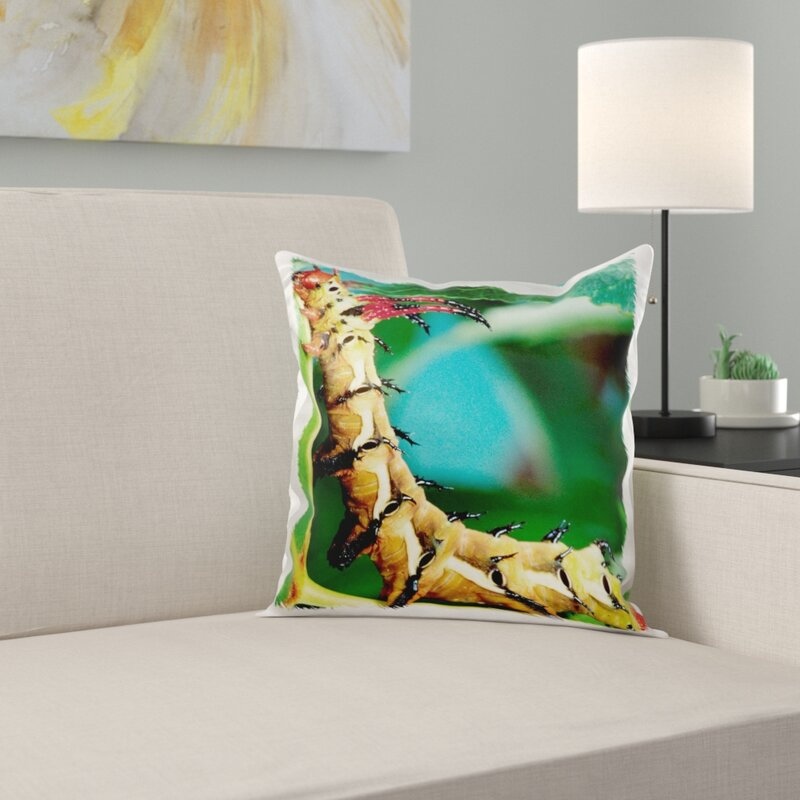 East Urban Home Hickory Horned Devil Caterpillar Insect Pillow Cover Wayfair