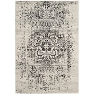 Look for Baldwin Park Power Loomed Ivory/Black Area Rug By Trent Austin Design