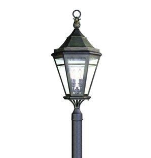 Darby Home Co Theodore 4-Light Black Lantern Head