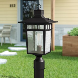 Bloomsbury Market Sherly Outdoor 1-Light Lantern Head