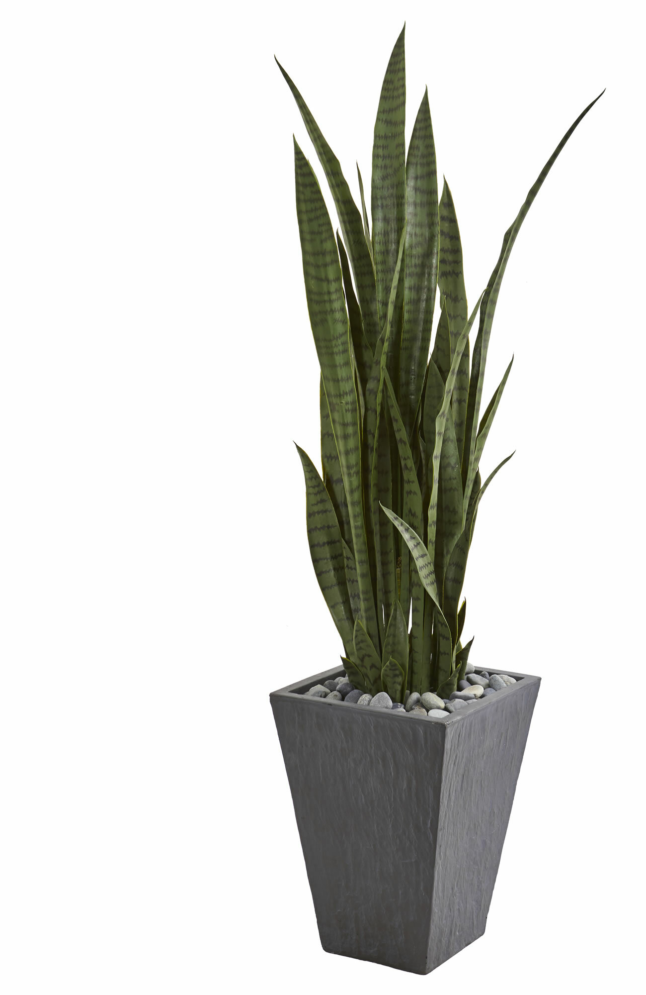 Bay Isle Home 57 Artificial Snake Plant In Planter Reviews Wayfair