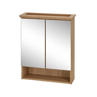 Stetson 62.5 X 75cm Mirrored Wall Mounted Cabinet By Brambly Cottage